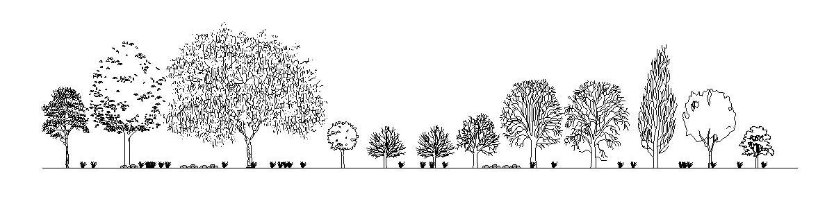 Stafáž stromy 2D